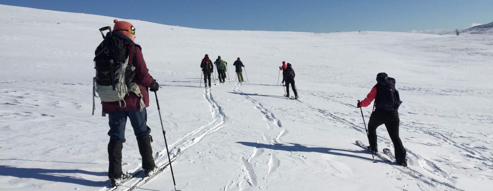 Seitsemän ihmistä hiihtää.